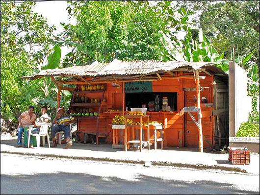 Santiago, DR fruit stand.
